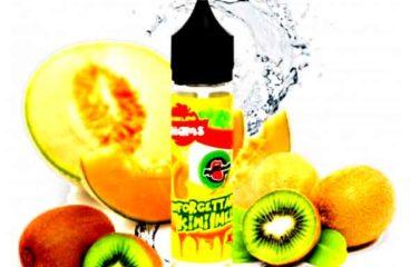 Unforgettable Kiwi melon by BigMouth!
